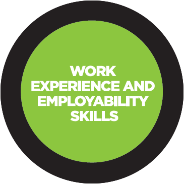 work experience and employability skills